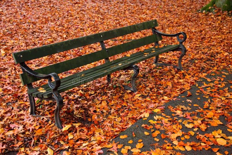 一张公园长椅在秋天 免版税图库摄影