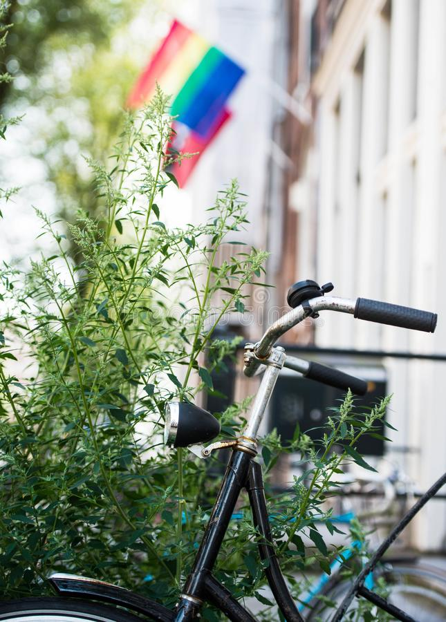 一张图片的阿姆斯特丹 自行车和LGBT旗子 库存照片