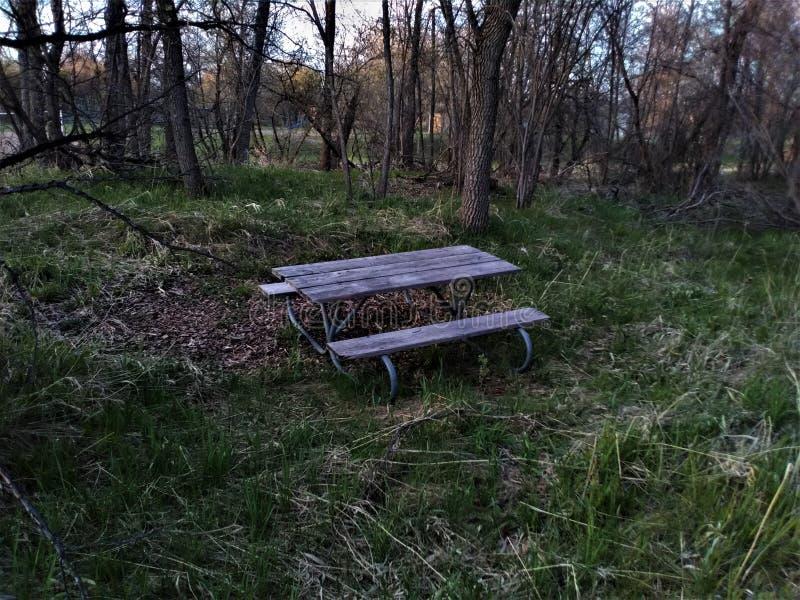 一张孤立公园长椅 图库摄影
