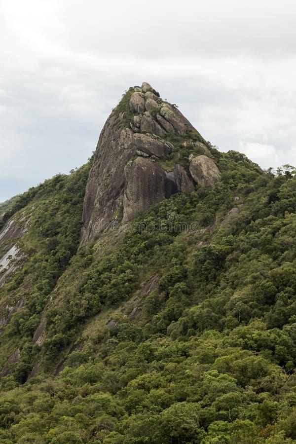 一张山岩石面孔的垂直的看法与有些树的在白色多云下- pico e serra做lopo 库存图片