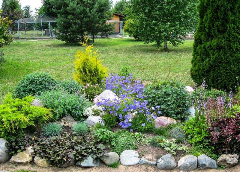 一张花床在庭院里 免版税库存图片