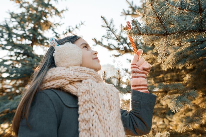 一微笑的女孩的室外冬天画象在圣诞树与传统棒棒糖,金黄小时附近的 图库摄影