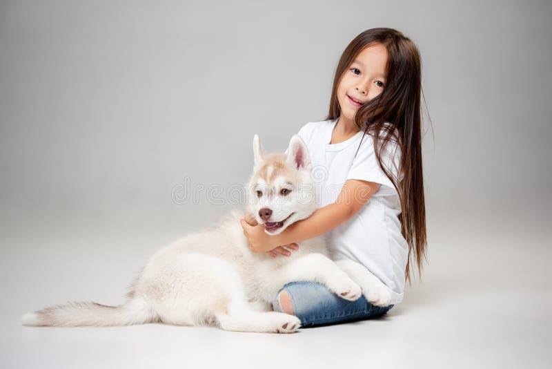 一快乐的女孩的画象获得与西伯利亚爱斯基摩人小狗的乐趣在地板上在演播室 免版税库存照片