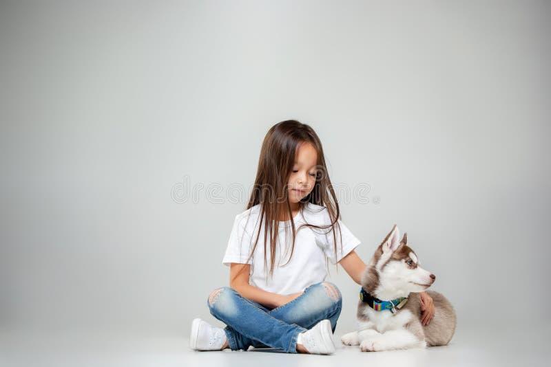 一快乐的女孩的画象获得与西伯利亚爱斯基摩人小狗的乐趣在地板上在演播室 免版税库存图片
