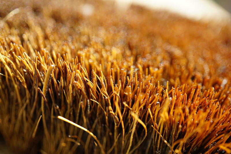 一把刷子的宏观细节与一个焦点的在橙色刺毛 库存照片