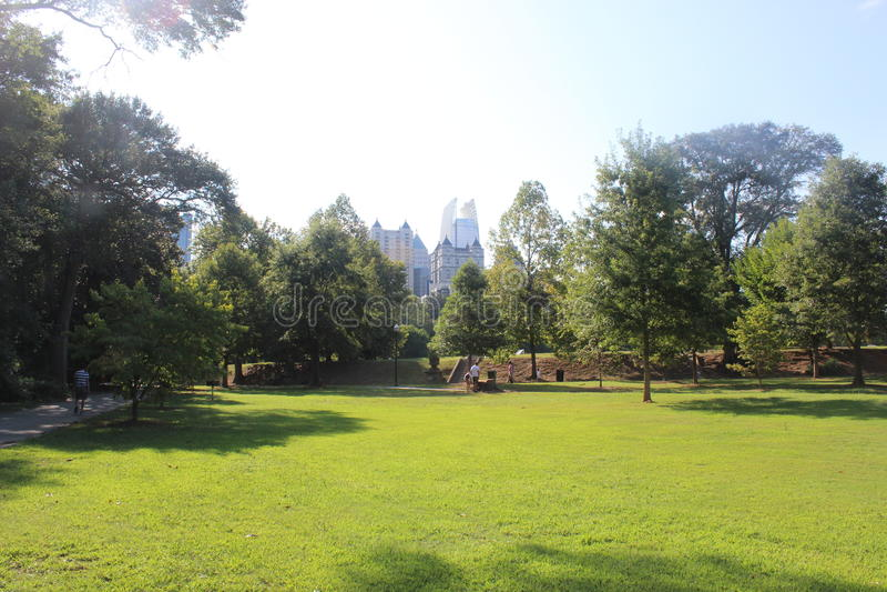 一日在公园 免版税库存照片