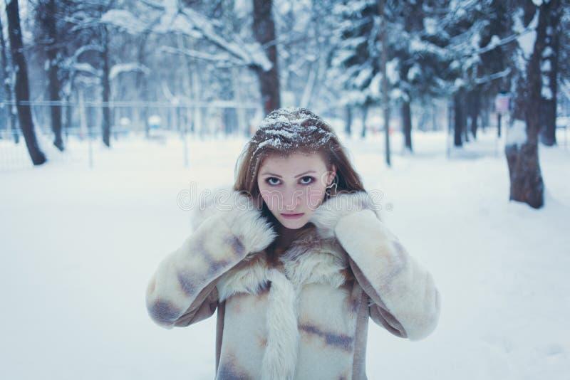 一明亮的毛皮大衣的在她的头发的美女有流动的头发的和雪以冬天森林为背景 免版税图库摄影