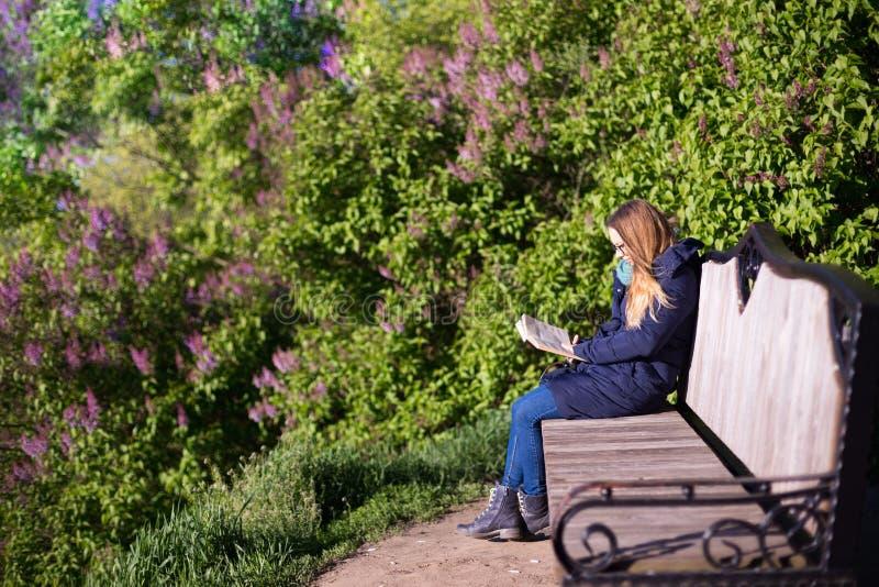 读一本书的女孩在公园在长凳 免版税库存照片