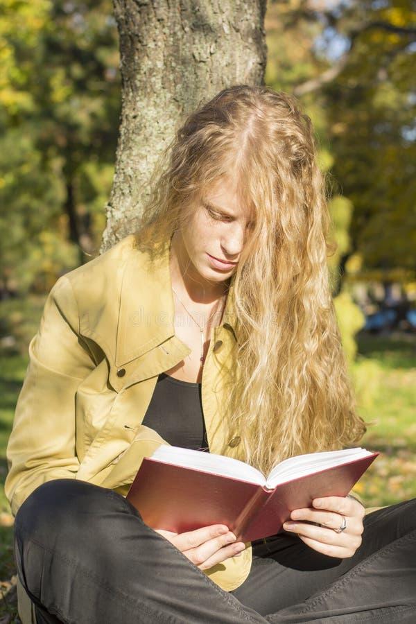 读一本书的白肤金发的女孩在公园在一个晴天 免版税库存图片