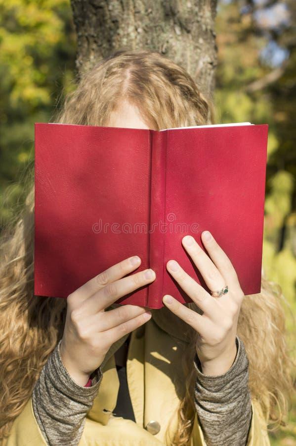 读一本书的白肤金发的女孩在公园在一个晴天 库存图片