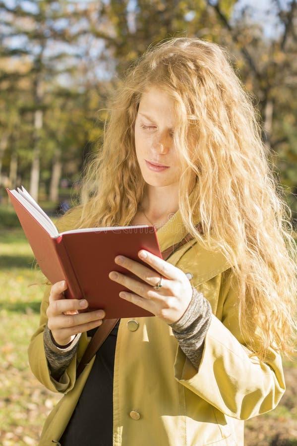 读一本书的白肤金发的女孩在公园 库存图片