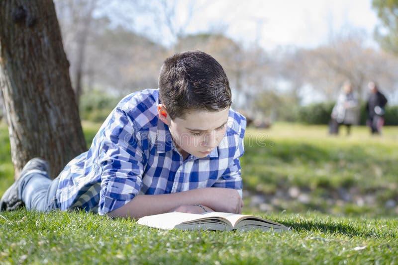 读一本书的年轻男孩在有浅景深的森林 免版税库存照片