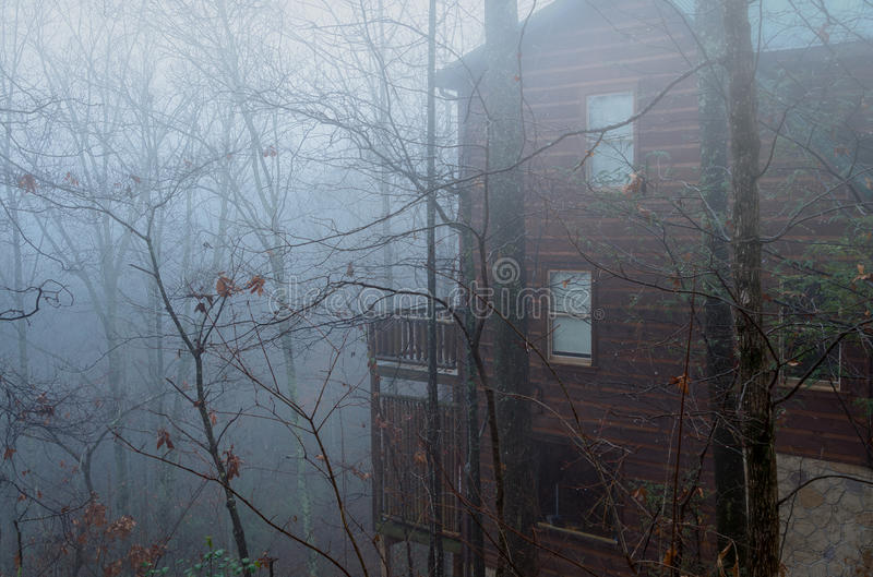 在smokies的有雾的早晨 免版税库存图片