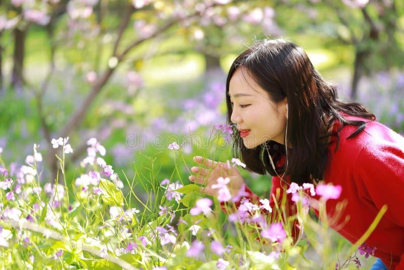 一朵亚洲中国自然妇女气味花的画象和听到音乐在春天公园享受业余时间 免版税库存图片