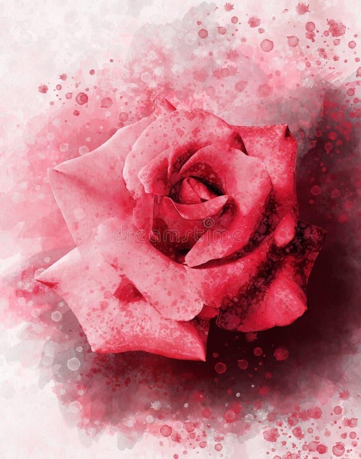 一朵充满活力的红色玫瑰色花的水彩图画 多汁植物的板材-离开仙人掌、仙人掌和柱仙人掌仙人掌 一个贺卡或婚姻的邀请的装饰元素 向量例证
