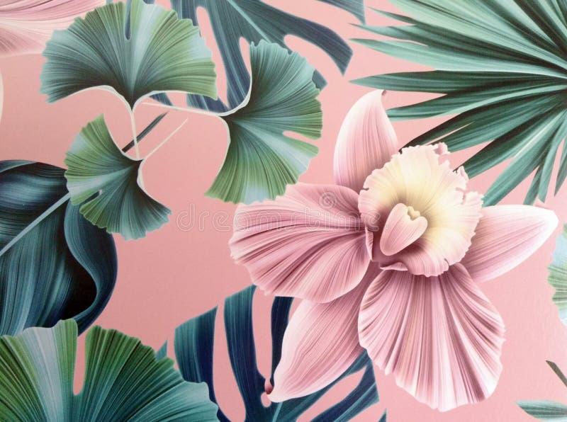 一朵典雅的花 免版税库存图片