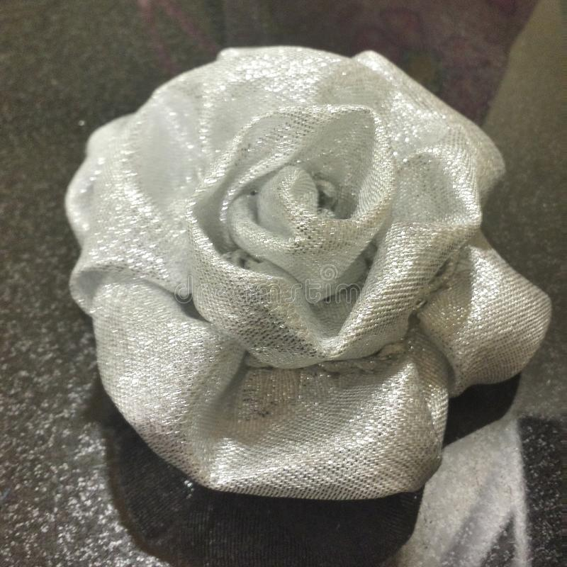 一朵白色玫瑰 免版税图库摄影