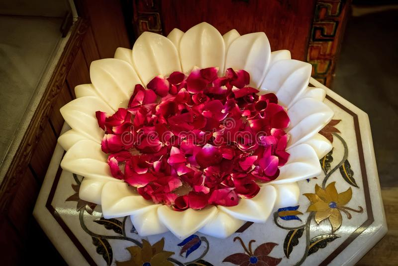 一朵红色玫瑰的瓣在一个大理石碗的 库存照片
