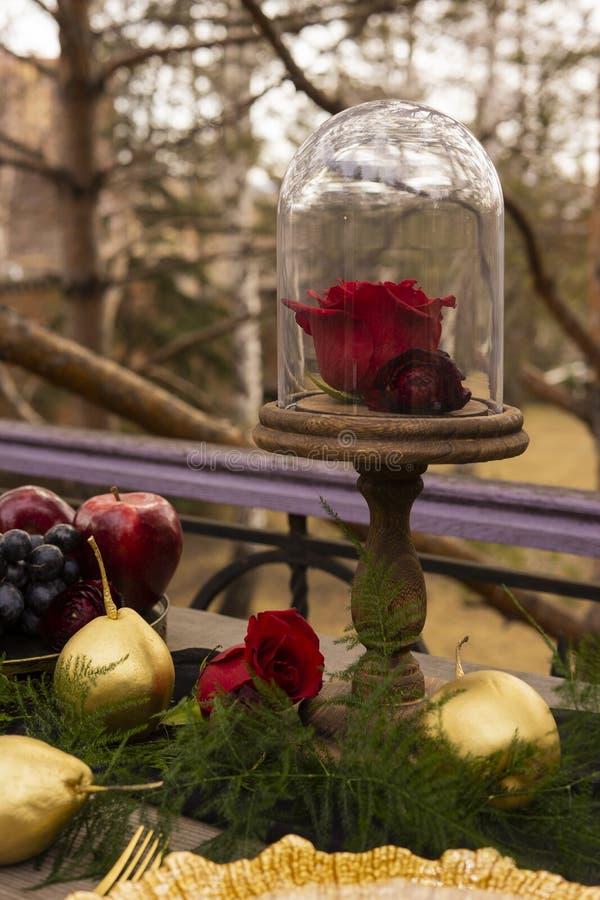 一朵红色玫瑰的芽,说谎在一块金黄板材和一金黄spoo 库存图片