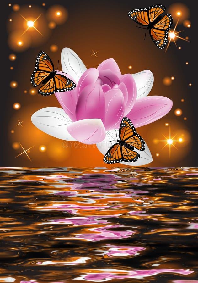 一朵美丽的莲花的反射与蝴蝶的 库存例证