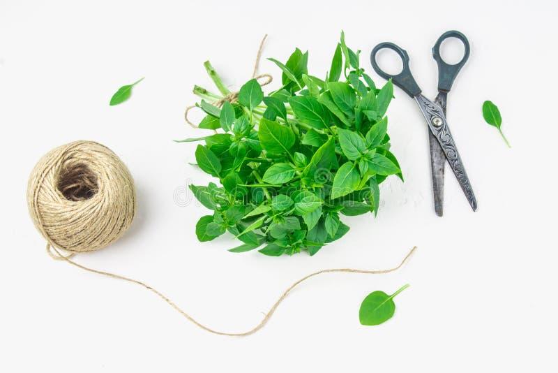 一束与麻线和剪刀缠结的绿色柠檬蓬蒿在一张白色具体桌上在砖墙背景 平放置 库存图片