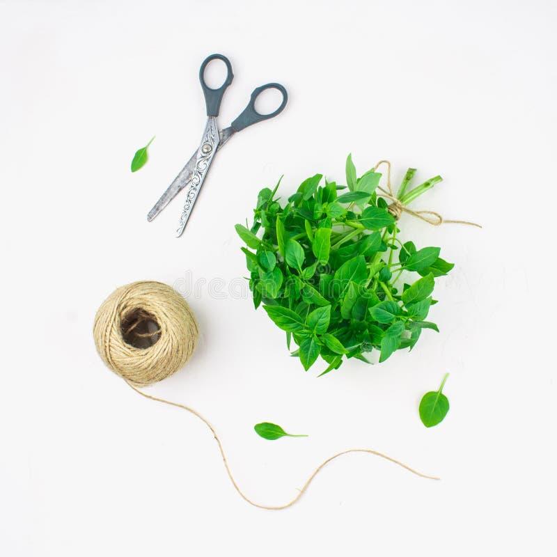 一束与麻线和剪刀缠结的绿色柠檬蓬蒿在一张白色具体桌上在砖墙背景 平放置 库存照片