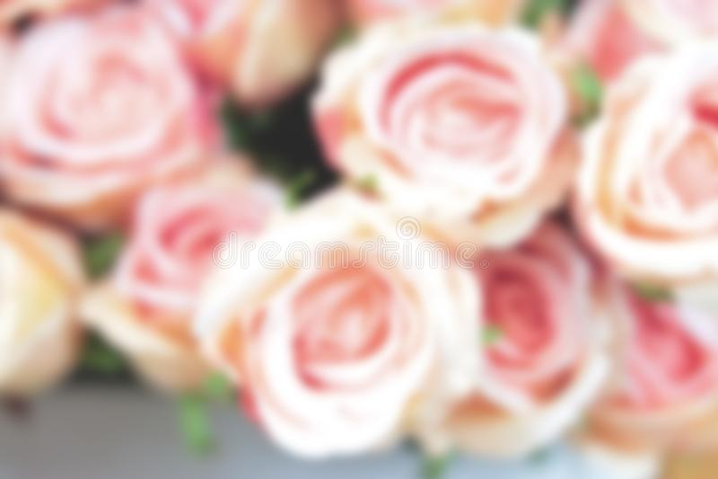 一束在焦点外面的桃红色玫瑰 免版税库存照片
