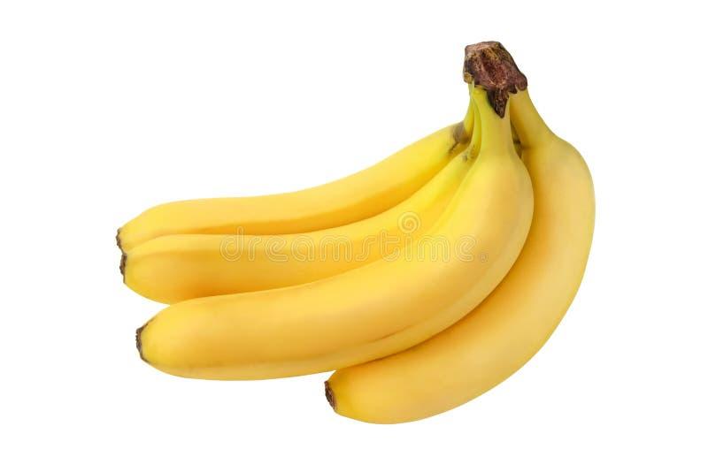 一束在白色背景的成熟黄色香蕉没有阴影 库存照片