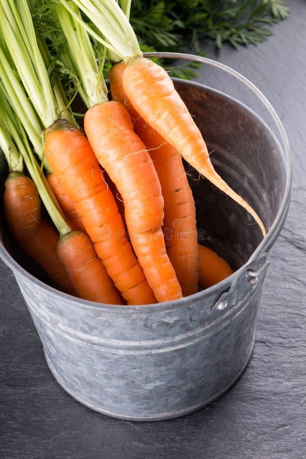 一束在罐子桶的新鲜的红萝卜 库存照片