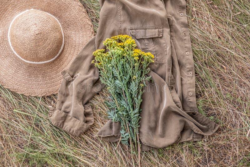 一束在退色的草和国家帽子的狂放的领域花 库存图片