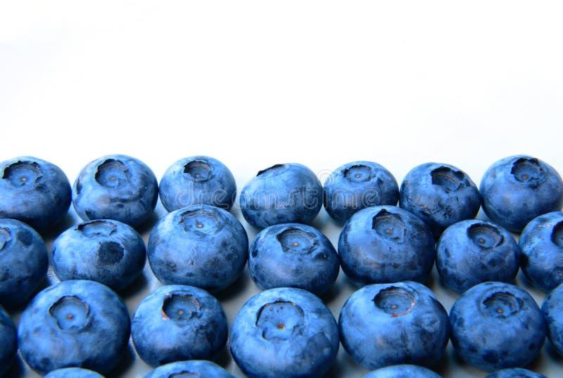 一束的特写镜头新鲜和精美蓝莓 库存照片