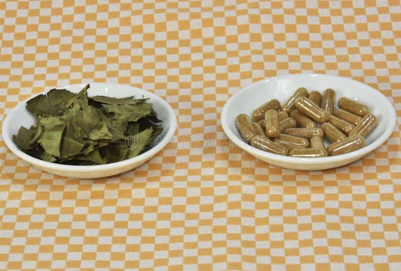 一束绿茶,在叶子胶囊或药片在盘 免版税库存照片