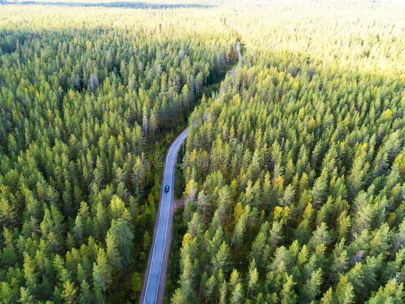 一条乡下公路的鸟瞰图在有移动的汽车的森林里 美好的横向 从上面夺取与寄生虫 空中鸟的 免版税库存图片