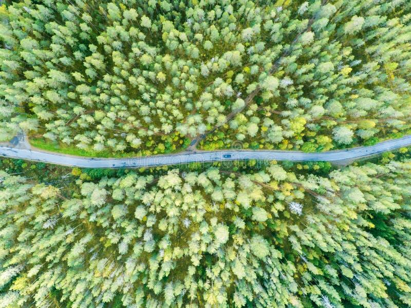 一条乡下公路的鸟瞰图在有移动的汽车的森林里 美好的横向 从上面夺取与寄生虫 空中鸟的 免版税库存照片