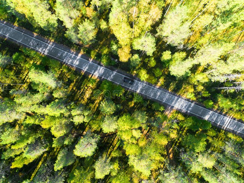 一条乡下公路的鸟瞰图在有移动的汽车的森林里 美好的横向 从上面夺取与寄生虫 空中鸟` 库存照片