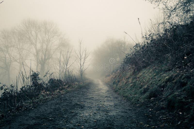一条令人毛骨悚然的道路在一个鬼的有雾的冬日在乡下 乌贼属编辑 莫尔文小山,渥斯特夏,英国 免版税库存照片
