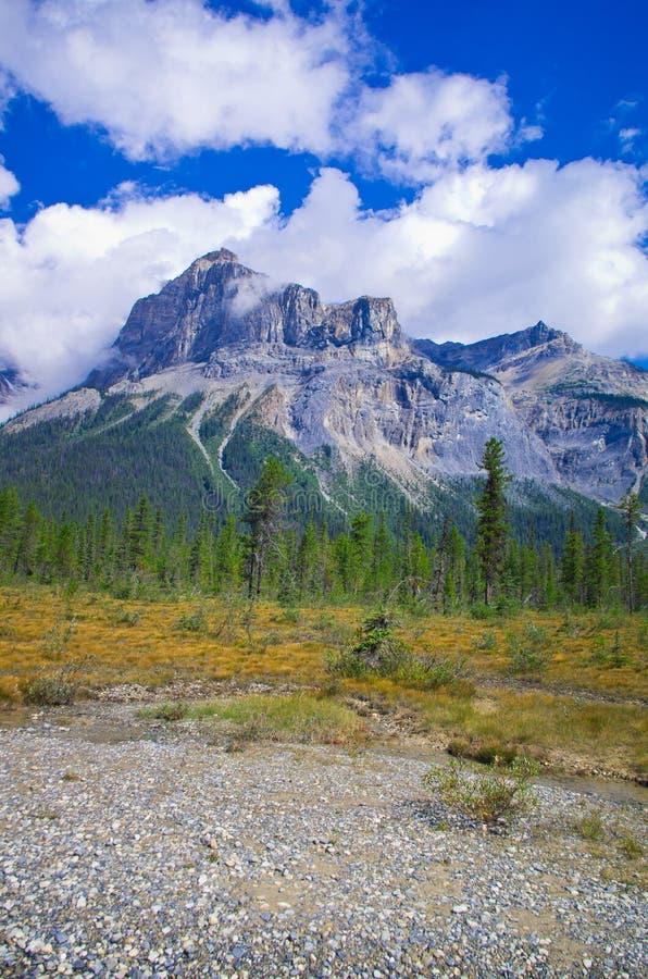 一条供徒步旅行的小道在Yo ho国家公园,加拿大罗基斯山的 图库摄影
