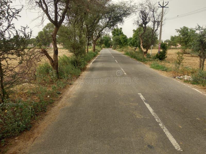 一条农村路支持与树 图库摄影