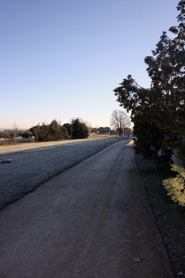 一条冻道路在公园 免版税库存照片