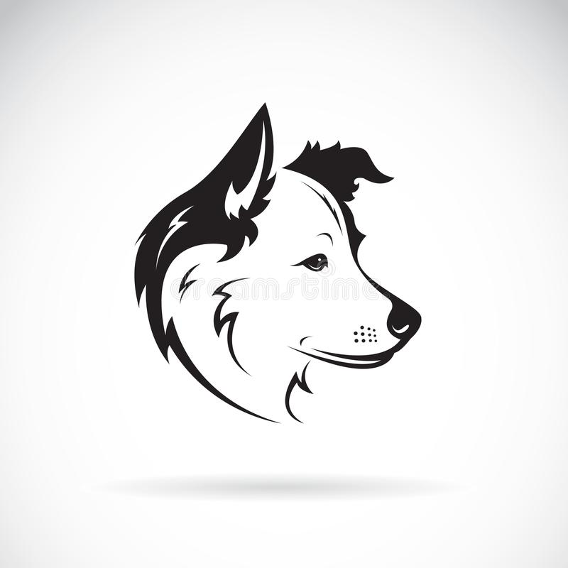 一条博德牧羊犬狗的传染媒介在白色背景的 宠物 向量例证