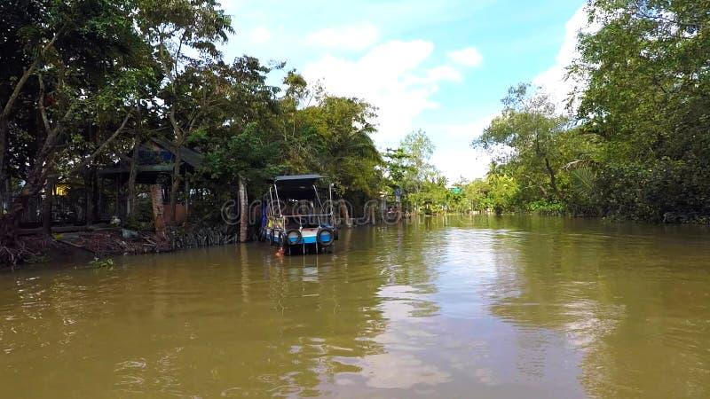 一条地方热带河在大洋洲 免版税图库摄影