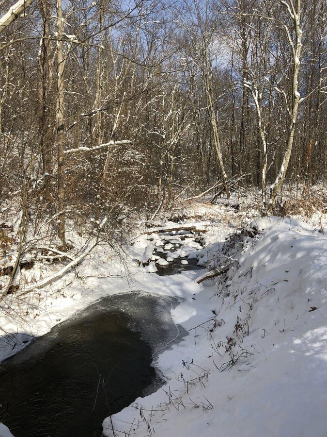 一条多雪的冷的小河 免版税库存图片