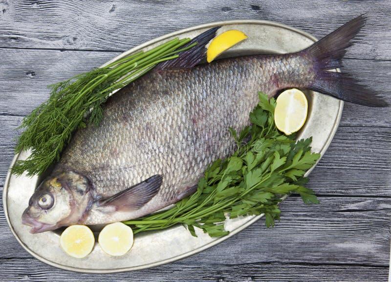 一条大活鲂河鱼钓鱼说谎在a在铁盘子有刀子和切片的柠檬和用盐莳萝 免版税库存图片