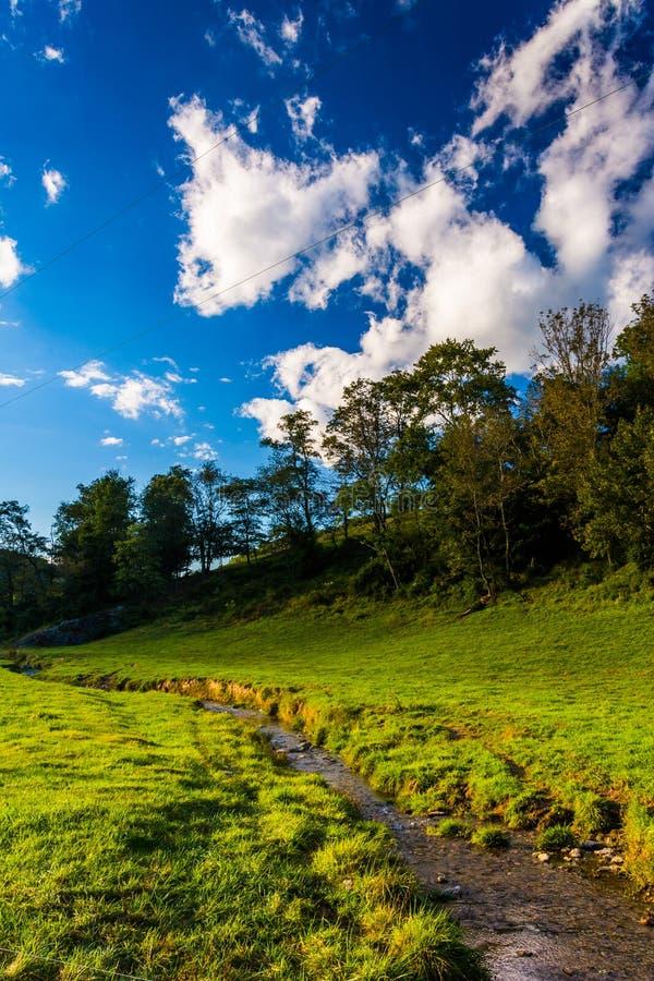 一条小小河通过一个领域在农村约克县, Pennsylvani 免版税库存照片