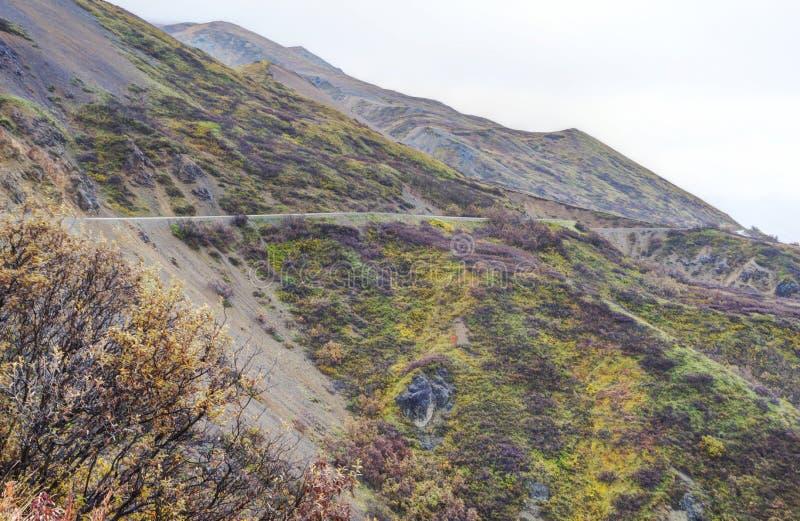一条小山路游遍阿拉斯加的土地 免版税库存图片