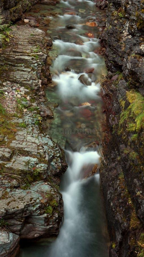 一条小河在冰川国家公园 免版税图库摄影