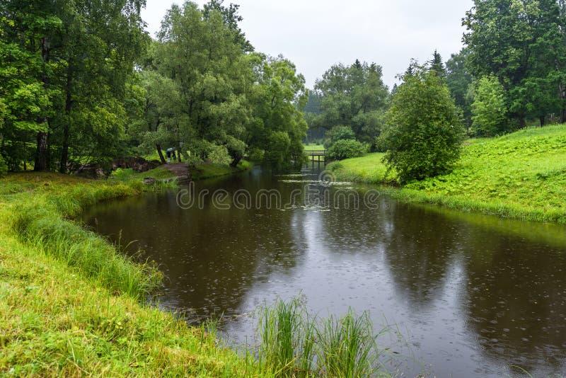 一条小河在草甸和树丛中流动 免版税库存图片