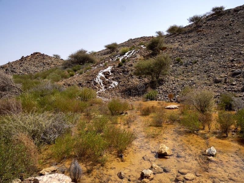 一条小溪沿着阿曼石质沙漠的斜坡流动 阿曼 免版税库存照片