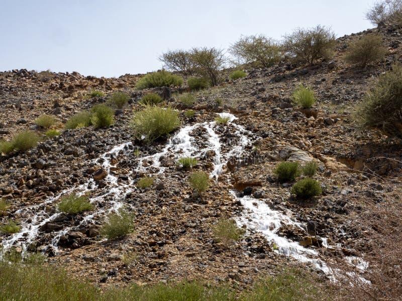 一条小溪沿着阿曼石质沙漠的斜坡流动 阿曼 免版税图库摄影