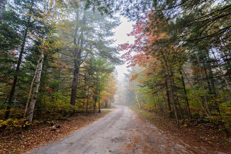 一条小的有雾的路在阿尔冈金省立公园,安大略,加拿大 库存图片